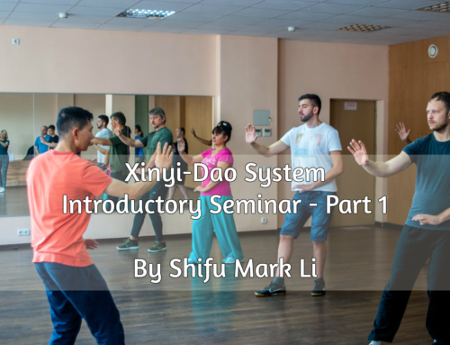 Xinyi-Dao Introductory Seminar (Part 1) by Shifu Mark Li