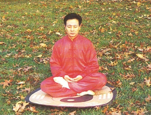 Xinyi-Dao Methods of Seated Meditation