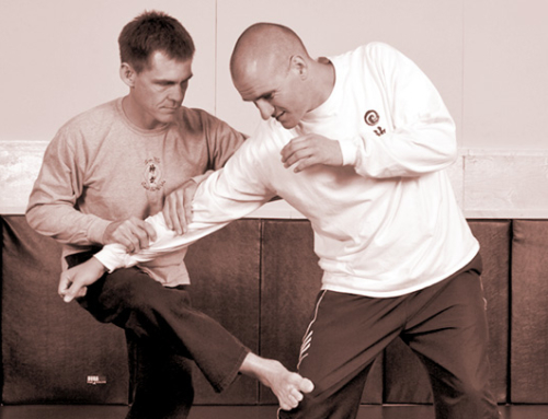Idealism and Impracticality of Internal Martial Arts (Taijiquan, Baguazhang, and Xingyiquan)